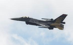 Картинка Fighting Falcon, General Dynamics, F-16C