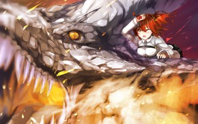 Картинка Девушка, Дракон, Аниме, Fate - Apocrypha, Fate / Grand Order