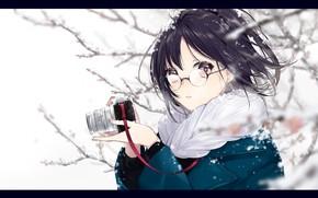 Картинка девушка, снег, удивление, аниме, арт, очки, фотоаппарат, sogawa