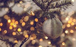 Картинка праздник, игрушка, елка, шар, ветка, шарик