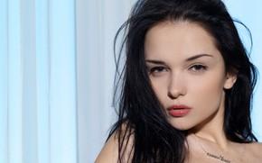 Картинка взгляд, лицо, модель, брюнетка, Katie Fey, Евгения Диордийчук