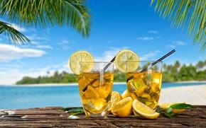 Обои лимонад, лето, лед, лимон, пальмы, море
