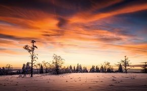 Картинка зима, небо, закат