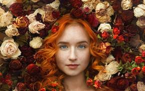 Картинка Ивга Фотограф, рыжеволосая, девушка, настроение, локоны, волосы, розы, лицо, Настасья, голубые глаза, рыжая, веснушки, взгляд, ...