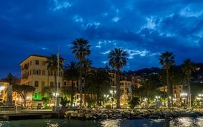 Обои набережная, дома, Италия, ночь, Санта-Маргерита-Лигуре, пальмы, огни