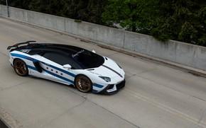 Картинка Lamborghini, Cars, Art, Chicago, Auto, Rally, Aventador, for, Motor, built, goldrush
