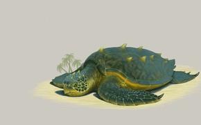 Картинка пляж, черепаха, арт, Illustrator, Grand Sea Turtle, Justen Moore