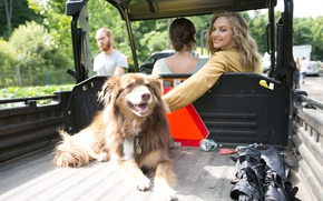 Обои авто, кузов, Amanda Seyfried, Scott Trindle, актриса, Аманда Сайфред, Allure, улыбка, блондинка, собака