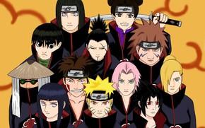 Картинка Kiba, Sasuke, Naruto, Sakura, anime, ninja, Akatsuki, manga, shinobi, Naruto Shippuden, Hinata, Neji, Shikamaru, Tenten, …