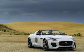 Обои поле, белый, пасмурно, Jaguar, равнина, холм, V8, 575 л.с., 5.0 л., F-Type Project 7