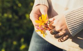 Картинка цветы, руки, буктик