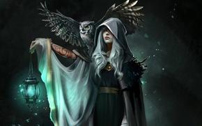 Обои фонарь, Alistair, Dragon Age, Julia Kovalyova, ведьма, ночь, голубой свет, тату, седая, филин, плащ, сова, ...