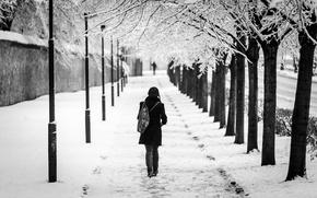 Картинка девушка, снег, город, аллея