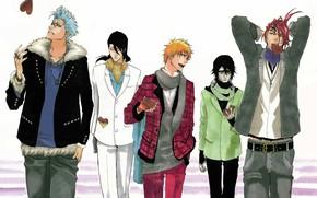 Картинка Anime, Ichigo Kurosaki, art, Ulquiorra Cifer, Bleach, Byakuya Kuchiki, Renji Abarai, Grimmjow Jaggerjack