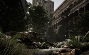 Картинка город, разрушения, Post Apocalyptic Sanctuary