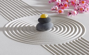 Картинка энергия, цветы, камень, Япония, сад, Japan, stone, Дзен, energy, garden, философия, Zen, sand monk