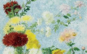 Картинка цветы, картина, Achille Lauge, Ашиль Ложе, Изучение Хризантем