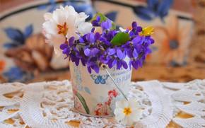 Картинка Цветы, Цветочки, Горшок, Flowers