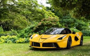 Картинка жёлтый, Ferrari LaFerrari, Aperta, Ferrari LaFerrari Aperta