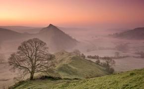 Картинка горы, туман, дерево, Англия, утро, долина
