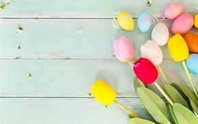 Картинка цветы, яйца, весна, colorful, Пасха, тюльпаны, wood, pink, flowers, tulips, spring, Easter, eggs, decoration, Happy, …