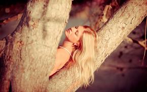 Картинка девушка, дерево, настроение, волосы