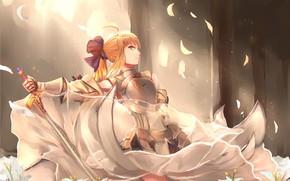 Картинка anime, warrior, manga, bishojo, Fate, japonese, Type Moon