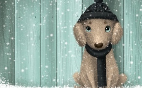 Картинка зима, снег, собака, изумруд