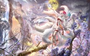 Картинка зима, снег, ночь, дерево, луна, платье, полнолуние, League of Legends, ahri, The Nine-Tailed Fox, Snow …