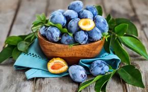 Обои плоды, сливы, синий, фрукты