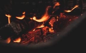 Картинка огонь, пламя, костер, угли