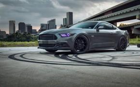 Обои Ford, Road, Niche, Mustang, Wheels