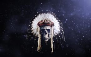 Обои череп, индеец, перья