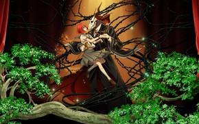 Картинка двое, шипы, Mahou Tsukai no Yome, Невеста чародея