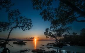 Картинка море, деревья, закат, лодка, Индия, India, Андаманские острова, Бенгальский залив, Andaman Islands, Bay of Bengal, …