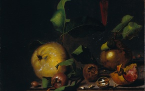 Обои картина, масло, Натюрморт с Грушами Мушмулой и Стаканом, Мартинус Неллиус, дерево