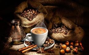 Обои корица, полумрак, звезда аниса, бадьян, орехи, мешки, блюдце, горячий, кофе, зёрна, напиток, чашка, пар, фундук, ...