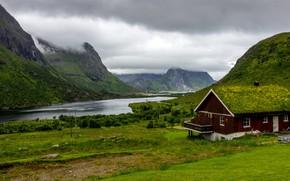 Картинка зелень, трава, облака, деревья, горы, тучи, дом, пасмурно, скалы, Норвегия, залив, Лофотенские острова, Lofoten
