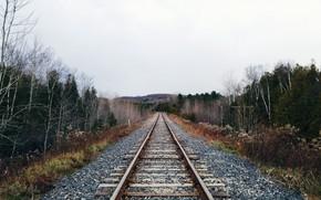 Картинка природа, перспектива, железная дорога