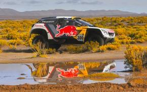 Картинка Отражение, Спорт, Скорость, Гонка, Лужа, Peugeot, Фары, Red Bull, 300, Rally, Dakar, Дакар, Ралли, Sport, …