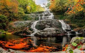 Картинка осень, вода, скала, водопад, потоки