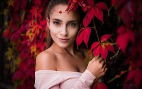Обои girl, long hair, brown eyes, photo, photographer, autumn, leaves, ponytail, model, lips, face, brunette, portrait, ...