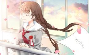 Картинка аниме, арт, девочка, косы