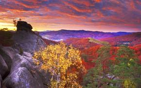 Обои камни, Карпаты, скалы, небо, Украина, облака, лес, осень, Закарпатье, рассвет, деревья, горы