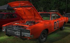 Картинка 1969, Dodge, Charger