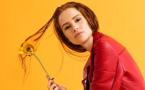 Картинка цветок, взгляд, желтый, фон, подсолнух, макияж, актриса, куртка, прическа, рыжая, красная, Riverdale, Madelaine Petsch, Мэделин …