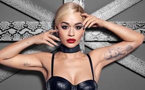 Обои портрет, певица, Rita Ora