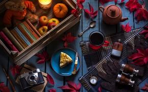 Картинка чайник, плюшевый мишка, кружка, книги, чай, фотоаппарат, листья, бинокль, компас, натюрморт, свеча, пирожное, яблоки, перчатки