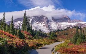 Картинка дорога, облака, пейзаж, горы, природа, Mount Rainier National Park