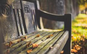 Картинка осень, листья, скамья
